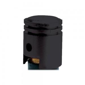 valve cap ventieldopjes zuiger zwart